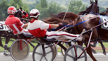 Harness Racing  Racetrack